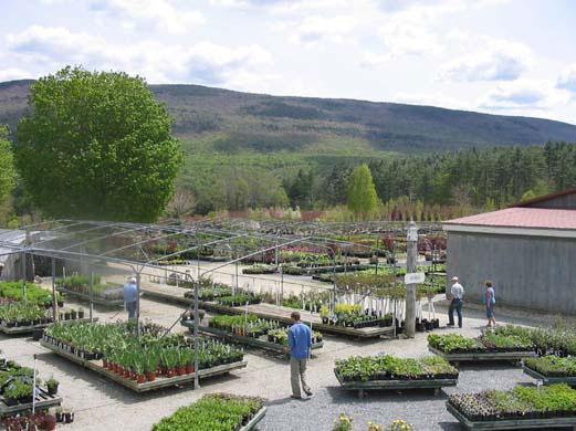 garden-center3