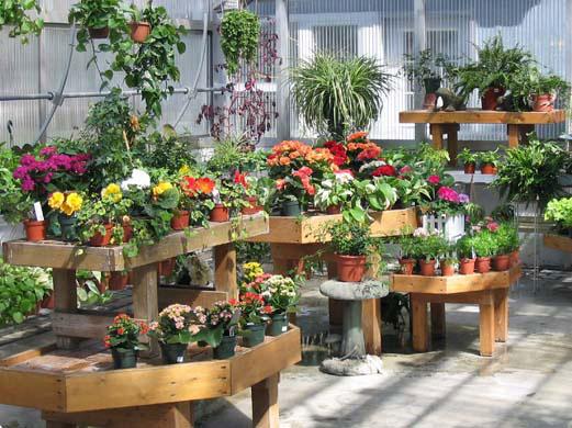 garden-centre10