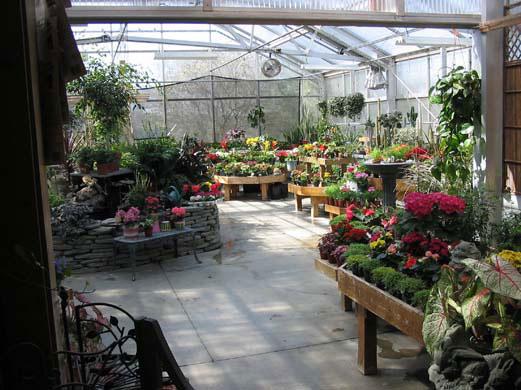 garden-centre8